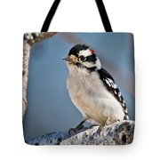 Downy Woodpecker Pictures 39 Tote Bag
