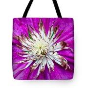 Dr. Seuss Flower  No. 1569 Tote Bag