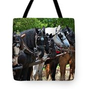 Draft Horses All In A Row Tote Bag