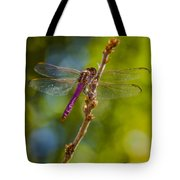 Dragon Fly Or Not Tote Bag