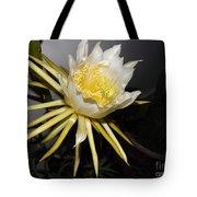 Dragon Fruit Blossom II Tote Bag