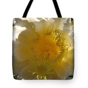 Dragon Fruit Double Center Tote Bag