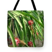 Dragon Fruit Tree Tote Bag