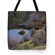 Dragon Imagery Tote Bag