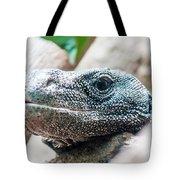 Dragon Lizzard Portrait Closeup Tote Bag