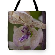 Dragon Orchid Tote Bag