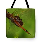 Dragonfly Art 2 Tote Bag