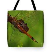 Dragonfly Art 2 Tote Bag