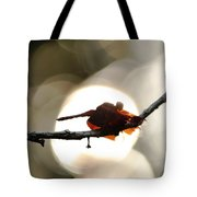 Dragonfly Bathing In Sunset Tote Bag