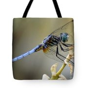 Dragonfly Beauty Tote Bag