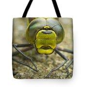 Dragonfly Close-up Tote Bag