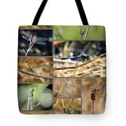 Dragonfly Collage Tote Bag