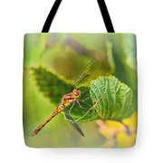 Dragonfly Days II Tote Bag
