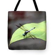 Dragonfly Dimernsions II Tote Bag