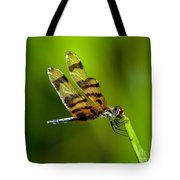 Dragonfly Eating Tote Bag