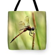 Dragonfly Gold Tote Bag