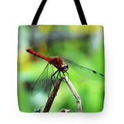 Dragonfly Hard At Work Tote Bag