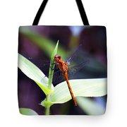 Dragonfly Hunt Tote Bag