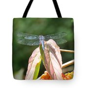 Dragonfly In Early Autumn Tote Bag