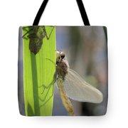 Dragonfly Metamorphosis - Eighth In Series Tote Bag