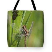 Dragonfly Metamorphosis - Eleventh In Series Tote Bag