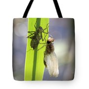 Dragonfly Metamorphosis - Fifth In Series Tote Bag