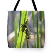 Dragonfly Metamorphosis - First In Series Tote Bag