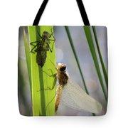 Dragonfly Metamorphosis - Seventh In Series Tote Bag