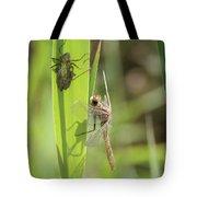 Dragonfly Metamorphosis - Tenth In Series Tote Bag