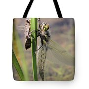 Dragonfly Newly Emerged - First In Series Tote Bag