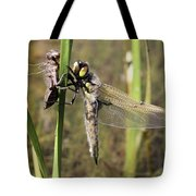 Dragonfly Newly Emerged - Third In Series Tote Bag