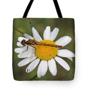 Dragonfly On A Daisy Tote Bag