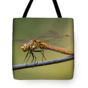 Dragonfly On A Wire Tote Bag