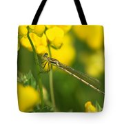 Dragonfly On Birds-foot Trefoil Tote Bag