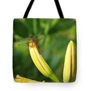 Dragonfly On Bud Tote Bag