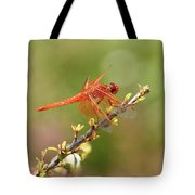 Dragonfly Resting Tote Bag
