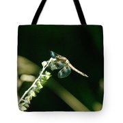 Dragonfly Resting In The Wind  Tote Bag