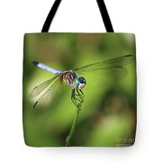 Dragonfly Square Tote Bag