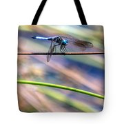 Dragonfly Walking A Tightrope Tote Bag
