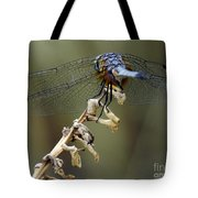 Dragonfly Wing Details Tote Bag