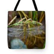 Dragonfly X-ray Tote Bag