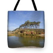 Dragons Back Budleigh Salterton Tote Bag