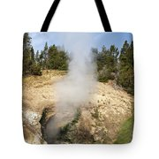 Dragon's Mouth Spring Tote Bag