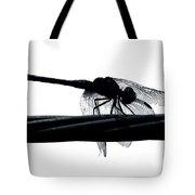 Dragons Silhouette Tote Bag
