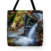 Dragons Teeth Icicles Waterfall Great Smoky Mountains Painted  Tote Bag