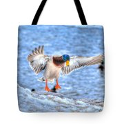 Drake Alighting Tote Bag