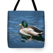 Green Headed Mallard Duck Tote Bag