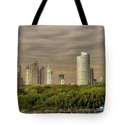 Dramatic Modern Buenos Aires Tote Bag