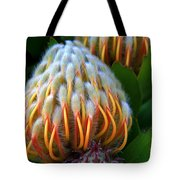 Dramatic Protea Flower Tote Bag