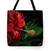 Dramatic Red Hibiscus Tote Bag